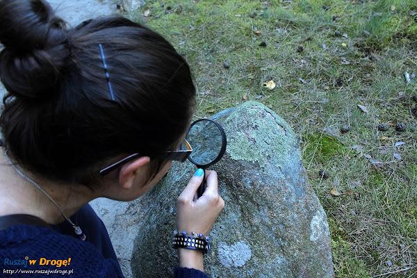 Kasia poznaje porosty na kamiennych kręgach