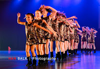 Han Balk Voorster Dansdag 2016-3632-2.jpg