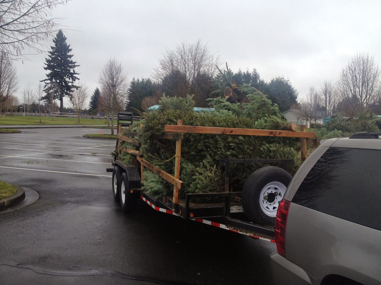 Christmas Tree Pickup 2014 - IMG_3171.jpg