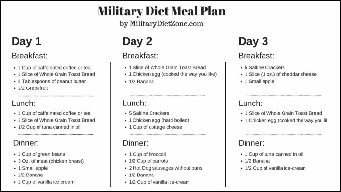 Recipe Momma Military Diet Meal Plan