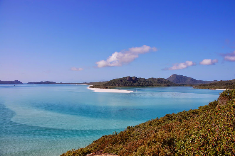Lookout Whitehaven Beach
