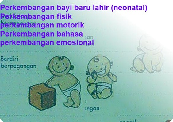 perkembangan-bayi-baru-lahir