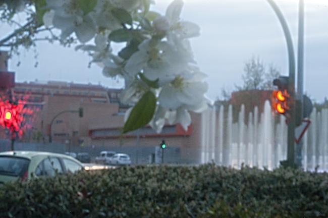 Fotografia de una fuente efectuada con una cámara estenopeica digital