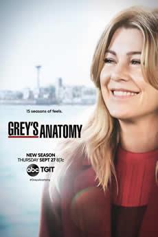 Baixar Série Grey's Anatomy 15ª Temporada Torrent Dublado Grátis