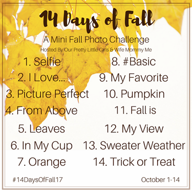 New Mini Fall Photo Challenge