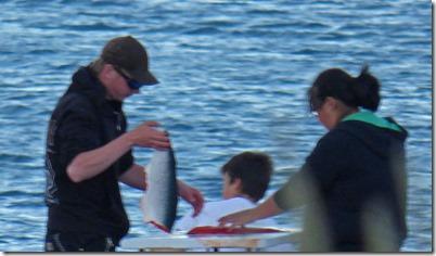 Cleaning Fish, Resurrection Bay, Seward Alaska