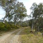 Walking along Dargals Trail (290117)