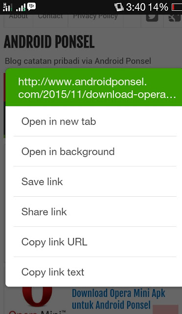 open new tab dolphin for android