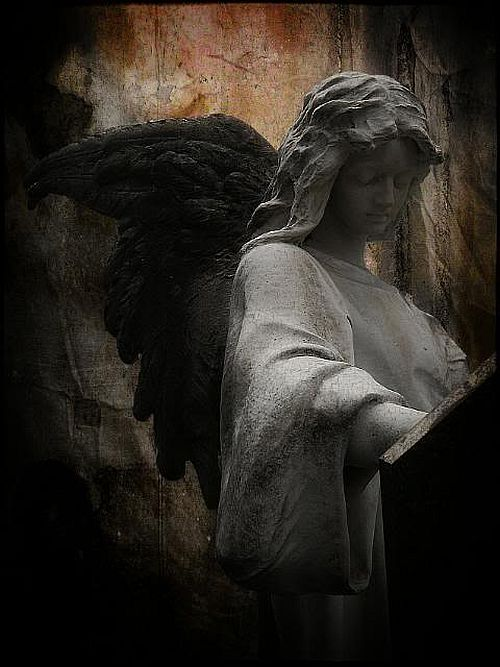 Black Wings Angel, Angels 2