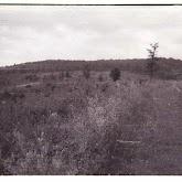n010-030-1966-tabor-sikfokut.jpg