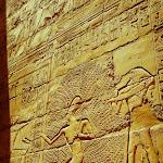 Egypt Edits (215 of 606).jpg