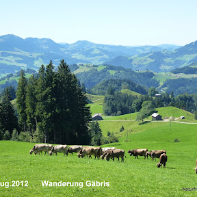 19.Aug 2012   Wanderung Gäbris