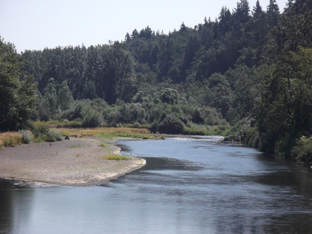 Skookumchuck River 2012 - DSCF1825.JPG