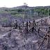 Explodem invasões de reservas indígenas com Jair Bolsonaro
