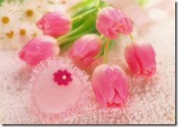 margaritas flores (53)
