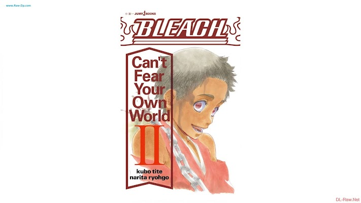 BLEACH Can't Fear Your Own World 第01-02巻