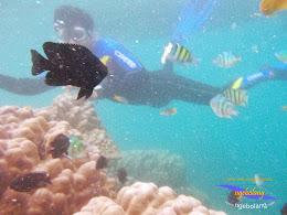 pulau harapan timur jauh 29-30 nov 2014 caklung 23