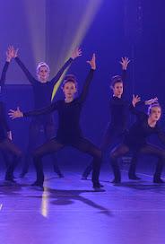 Han Balk Voorster dansdag 2015 avond-4670.jpg