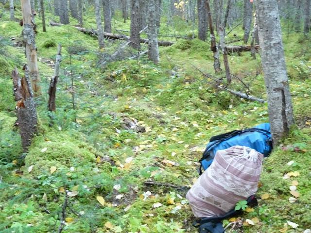 Moose Hunt in northern Quebec - Sept. 2013 - P1130760.JPG