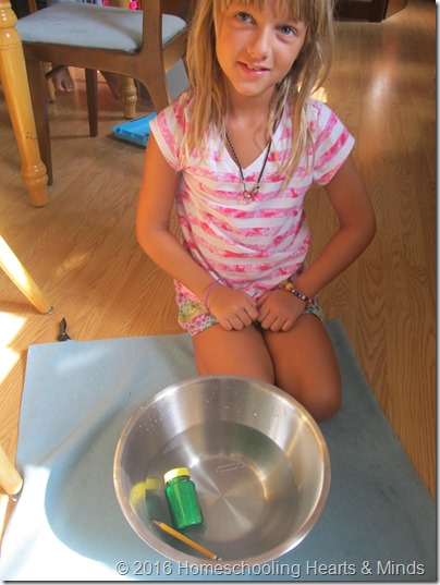 Rowing the Story about Ping at Homeschooling Hearts & Mind