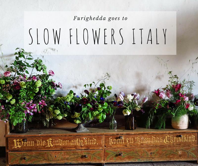 Slow Flowers 2