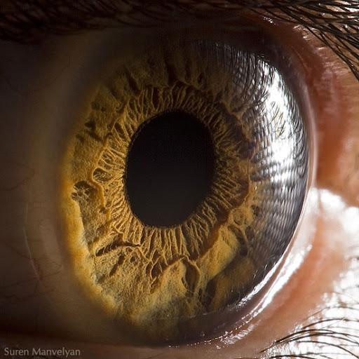 Beautiful eyes photography by Suren Manvelyan