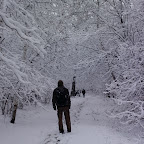Зимняя уборка в Дендрарии 019.jpg