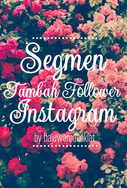 Segmen Tambah  Follower Instagram