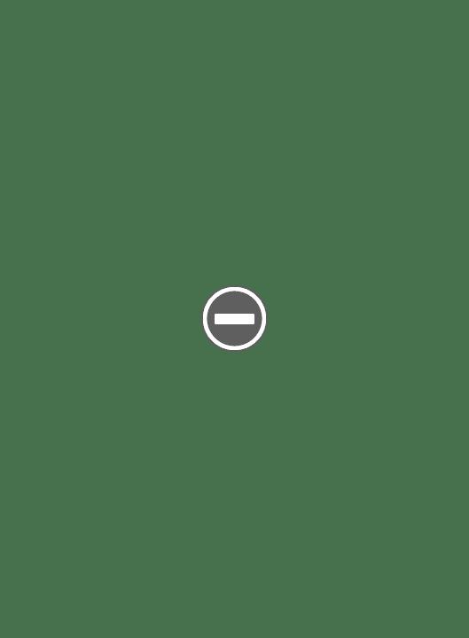 Travalong rasoir de voyage des années 1940s IMG_1811%2B%28Custom%29