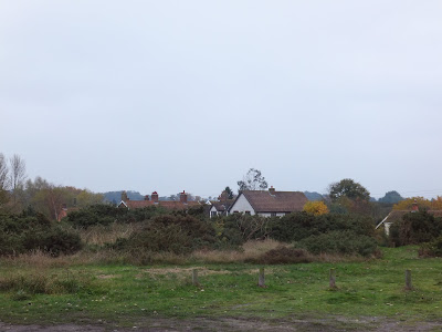 View southwards across Knodishall Common