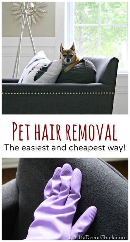 Pet hair removal