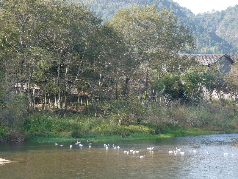 Chine .Fujian.Xiamen.Gulangyu island. Wuhi shan .A - P1030002.JPG