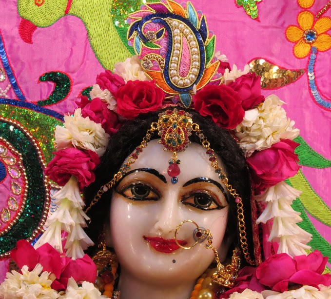 ISKCON Vallabh vidhyanagar Deity Darshan 19 jan 2017 (10)