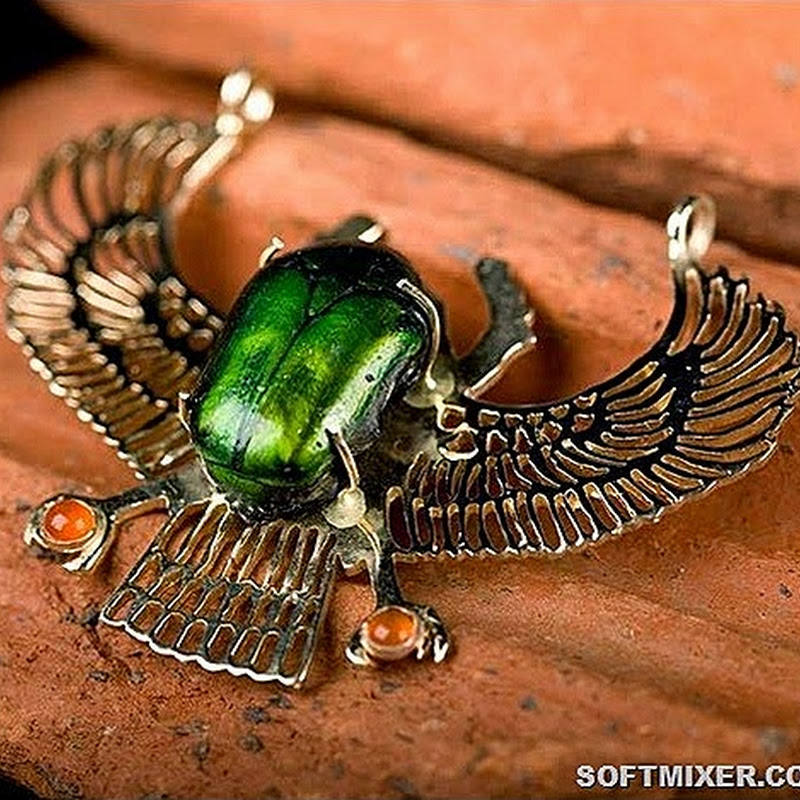 Большая тайна маленького жука