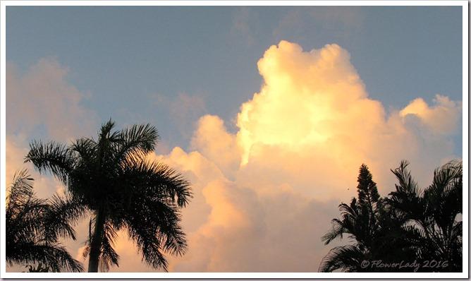 08-28-sunrise