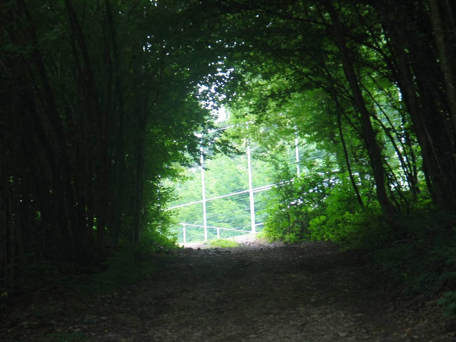 Taborjenje, Lahinja 2006 1.del - IMG_0055.JPG