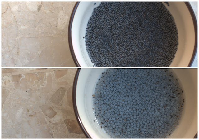 basil seeds, first put in water and after 30 minutes