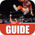 Guide for Smackdown Pain icon