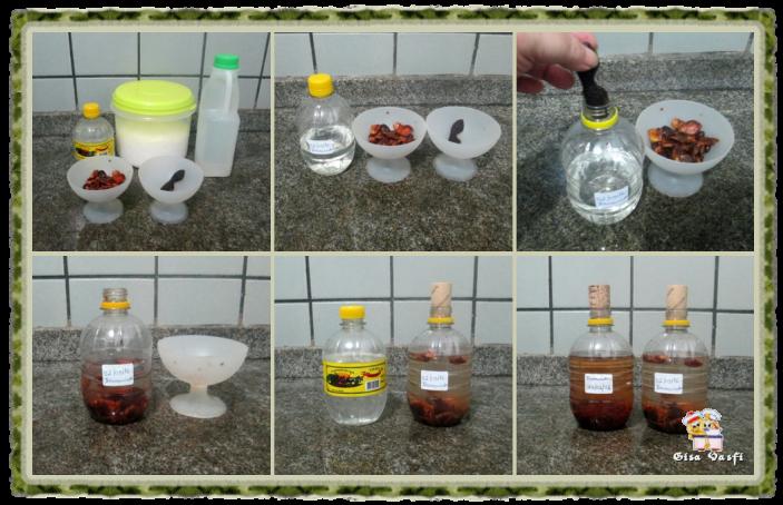 Suco e licor de tamarindo 5