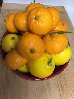 Meyer lemons and mandarin oranges in a bowl