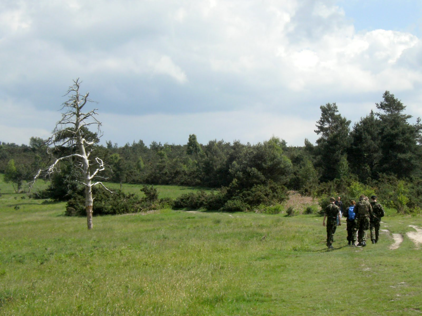 1006120047 Manoeuvres on Ashdown Forest