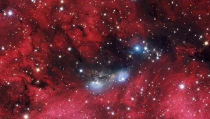 NGC 6914 e Cygnus OB2