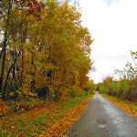 Fall_on_a_Midwest_back_road._Symanntha_Renn_2013._Missouri.JPG