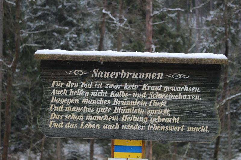 01. Januar 2016: Neujahrswanderung ins Waldnaabtal - IMG_1506.JPG
