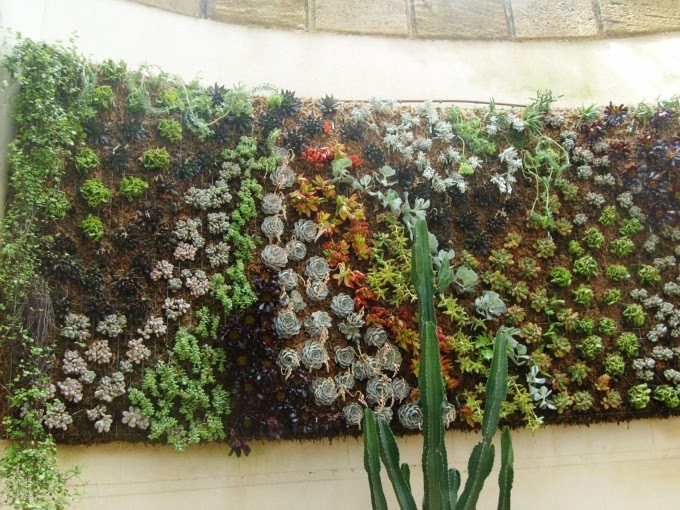 Arrels jardines verticales beneficios de los jardines for Beneficios de los jardines verticales