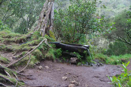 Source sur le plateau du petit Matarum.