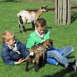 Welpen - Kinderboerderij & Crossbaan - IMG_2477.JPG