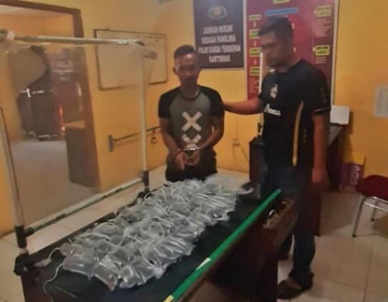 Terekam CCTV, 2 Pelaku Pencuri Ikan Cupang Dibekuk Polsek Firdaus