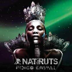 CD Natiruts - Índigo Cristal (Torrent) download