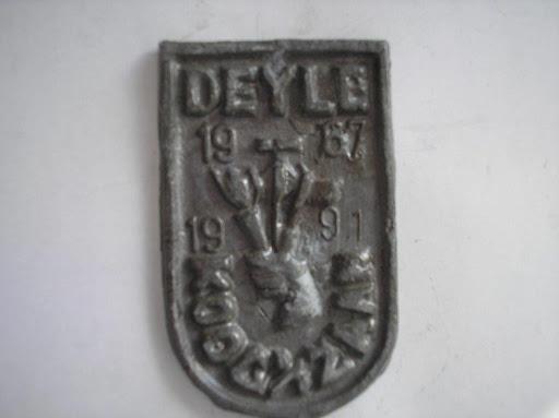 Naam Deyle jaartal 1991plaats Koog aan de Zaan.JPG